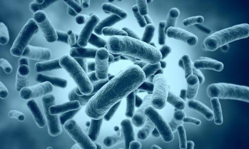 depositphotos_34894429-stock-photo-bacteria-cells-medical-illustration